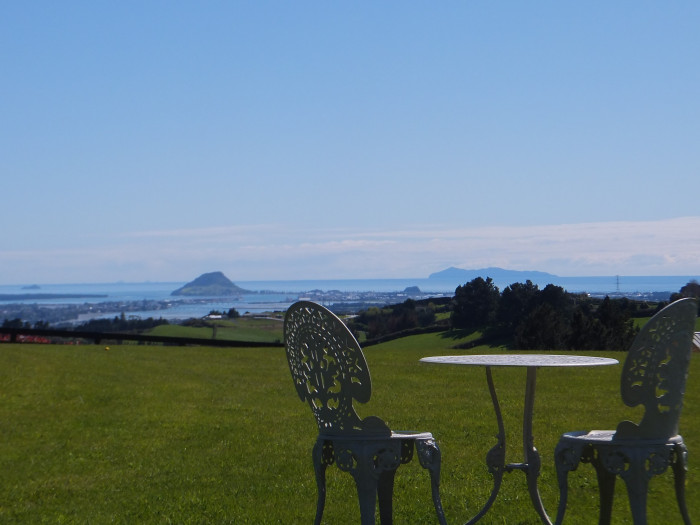 Tauranga Lodge Bed & Breakfast